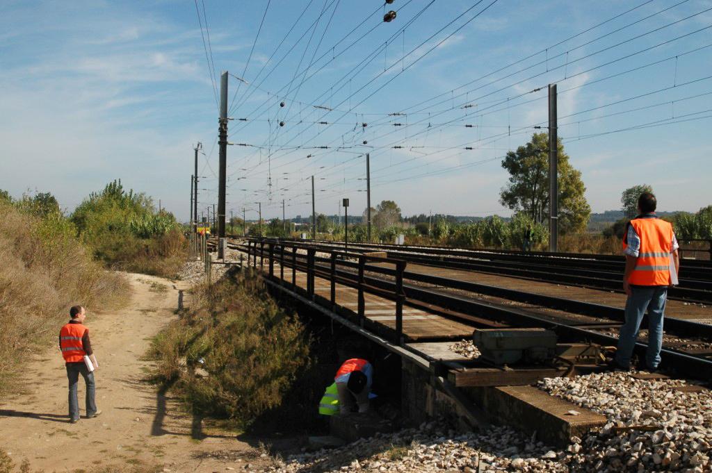 Linha do Norte afarelos -DSC_0052