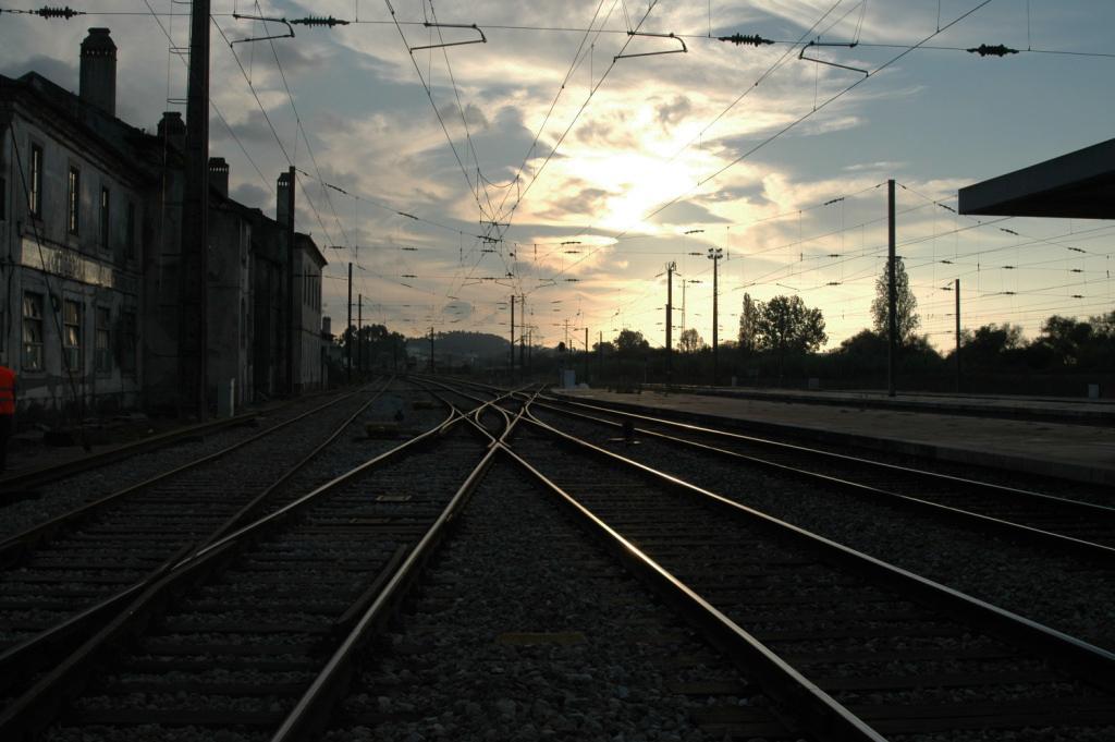 Linha do Norte afarelos -DSC_0123