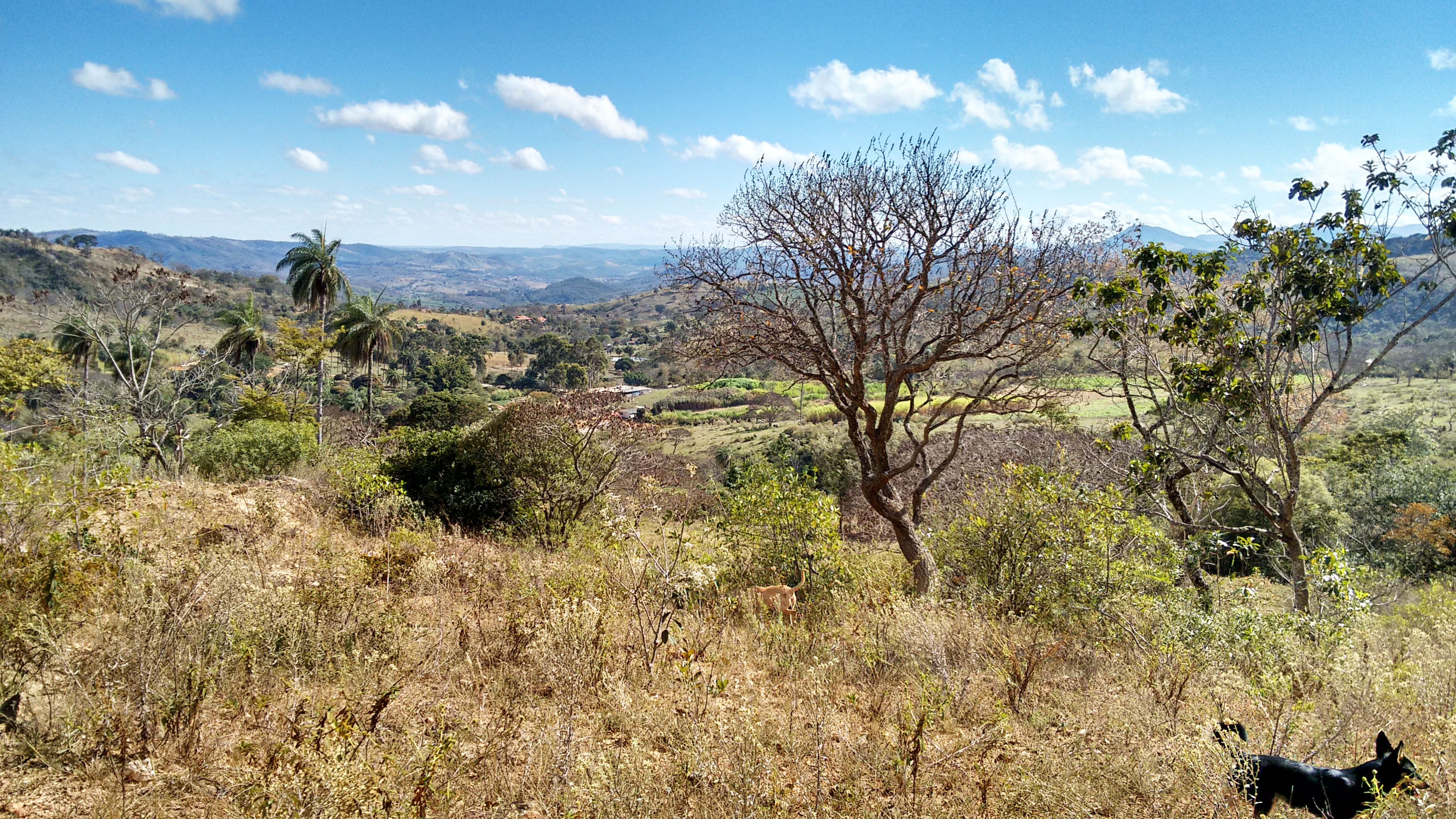 Minas Gerais, Brasil – ACC09 – Foto
